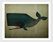 The Barnacle Whale Archival Pigment Print Giclee 7x9 inches SIGNED