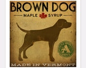 Brown Labrador Dog Vermont Maple Syrup GRAPHIC ART  print  signed