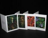Greeting Card - 4 Pack of Award-winning Original Watercolors