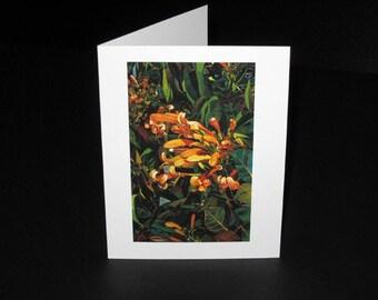 Clarinetes Greeting Card