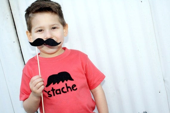It's A Stash-tastic Tee - on an American Apparel Organic Cotton Tee in Pomegranate