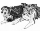 Pet Sketch Note Cards- 2 Animals (Set of 10)