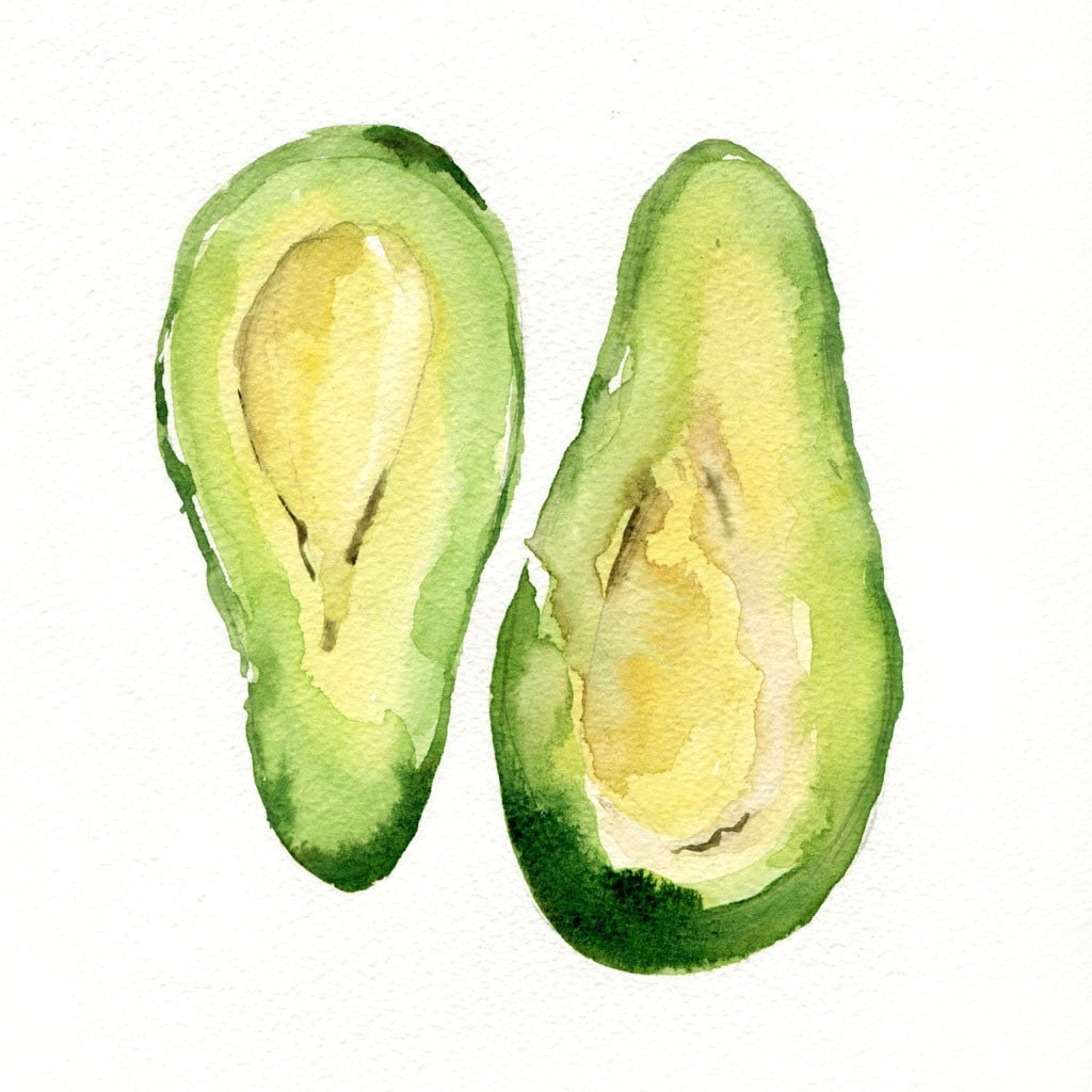 Avocado Art Print of my original watercolor by TheJoyofColor