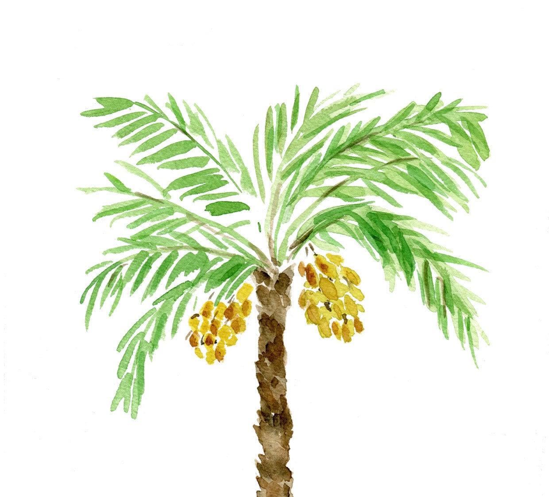 palm tree watercolor -#main