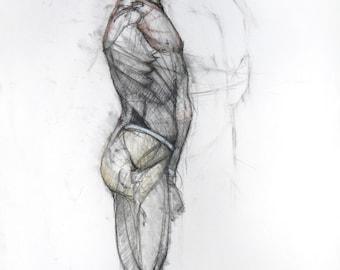 Anatomical Study - original Drawing  (FD 41)