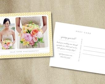 Postcard Marketing Template for Photographers (digital Photoshop files) - m0044