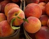 Photo - Farmers' Market Fresh Ontario Peaches  - Photo Print Postcard - Food Photography