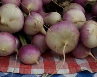 Turnip Seeds - Organic Purple Top White Globe Turnip Seed