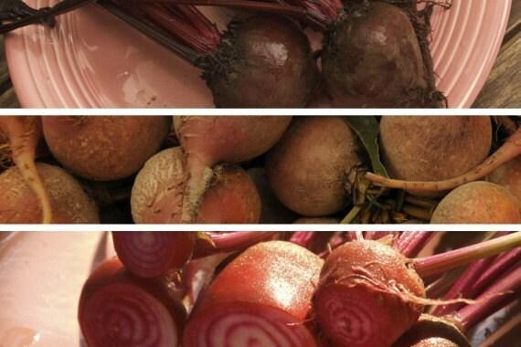 Organic Jewel Toned Beet Seed Trio