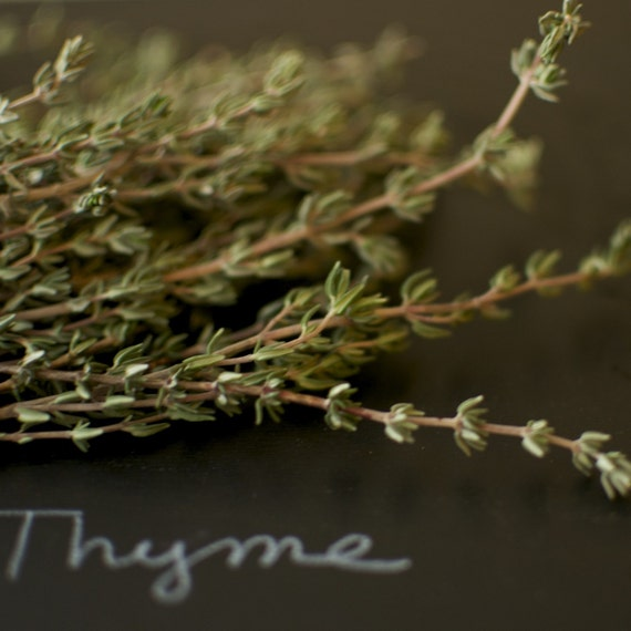 German Winter Thyme Seeds  - Culinary Herb