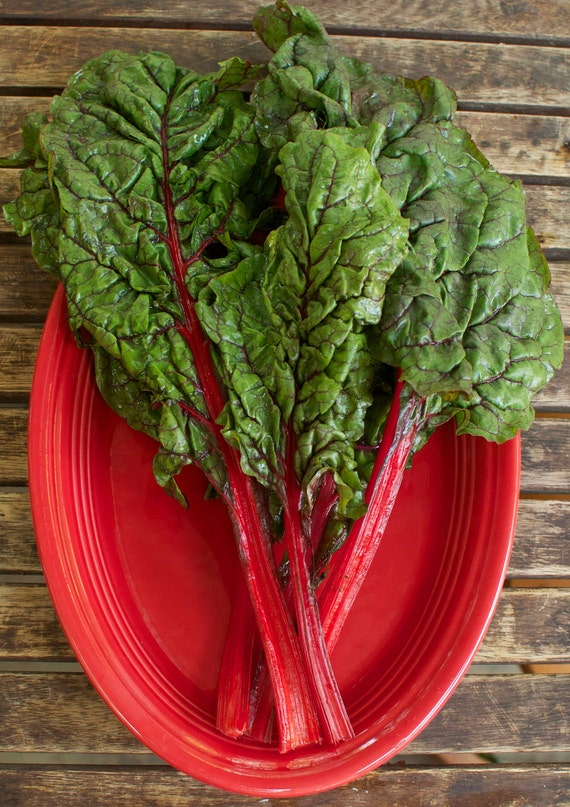 Organic Rhubarb Red Swiss Chard Seeds