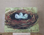 12 piece Bird NEST Stationary Card Set with BIBLE VERSE.  6 flat note cards