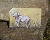 12 piece Baby Lamb Sheep Gift Card Enclosure Set. Best Seller. Artwork by Barclay B. Gresham. High quality MATTE printing acid free packing.