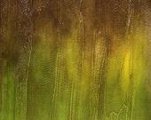 "Abstract Acrylic Painting-""Bracken"""