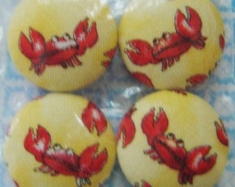 4 - Magnets / Smiling Crabs