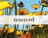 Reserved for Quinlyn