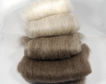 Brown to Fawn Shetland Ombre Batts - 4 ounces