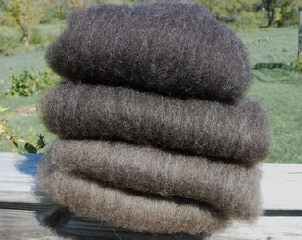 Shetland Black to Brown Ombre Spinning Batts - 4 ounces