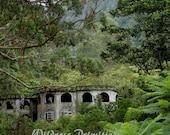 Abandoned - Panama 5x7 Photograph