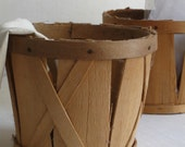 Farm Garden Basket- Green Storage