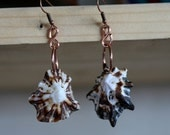 Natural African Shell and Copper Wire Earrings.