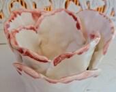 Cream & Rose Glazed Tulip