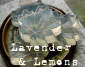 Lavender and Lemons - Gentle Hemp Oil Soap