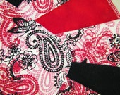 Black and Red Paisley, 2 Dozen Flannel Cloth Baby Wipes, Wash Cloths, Set of 24