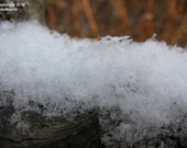 freshly fallen snow on fence railing 8x10 print (other sizes available - see shop announcement)