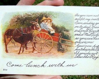 Antique Donkeys Children Carriage Invitation Postcard, Luncheon
