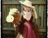 Giddy Up Cowgirl Costume 3T to 5T with accessories