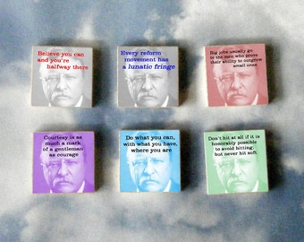 Theodore Roosevelt Magnet Gift Set
