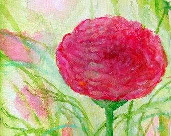 Pink Ranucual Flower Original Painting