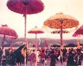 Sun Festival umbrellas/ photo postcard