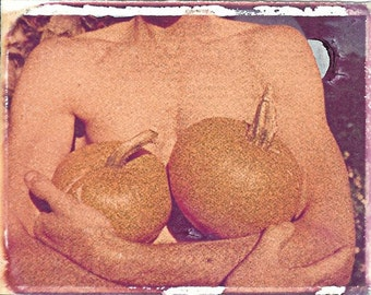 Garden of Breasts with pumpkins/ photo postcard