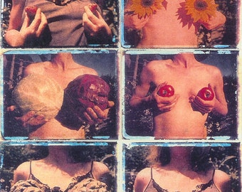 Garden of Breasts series/ photo postcard