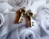Adorable Skeleton Key Charms