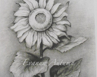 Sunflower Print Stationery Card with Envelope-Art-Pencil Drawing-Print-Note Cards