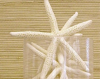 "Starfish - 6""-7"" Set of 5 - bulk star fish wedding coastal beach decor"