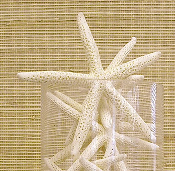 "Beach Decor - 5 Starfish - 5""-6"""
