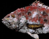 """Red Snapper - """"Midnight Snapper"""" - Gyotaku Fish Rubbing - Limited Edition Print (33 x 16.25)"""