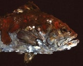 "Red Grouper - ""Night Watch"" - Gyotaku Fish Rubbing - Limited Edition Print (24.5 x 14)"