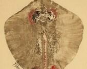 Stingray - Gyotaku Fish Rubbing - Limited Edition Print (15 x 22.5)