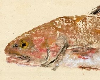 Red Drum - Gyotaku Fish Rubbing - Limited Edition Print (29.25 x 11)