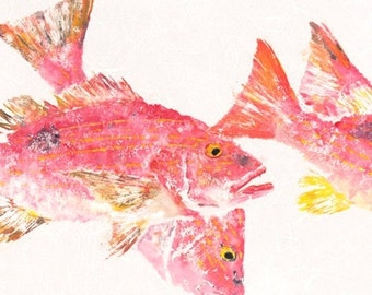 "Lane Snapper - ""In the Pink"" - Gyotaku Fish Rubbing - Limited Edition Print (36.5 x 15.25)"