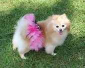 Cole Baby Tutus Presents NEW Posh Paws Tutus for Dogs Lots of Color Choices Great for Parties and Weddings