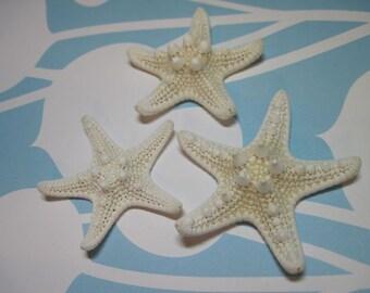 3 Mini Starfish - Knobby White Starfish Sea Stars 705