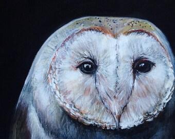 Dark Barn Owl Raptor Original Artwork Fine Art Print