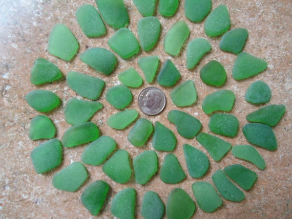 Genuine Beach Sea Glass Surf Tumbled Emerald Green Kelly rare  Seaglass Huge 50 pcs  A01