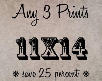 Fine Art Photography - Any THREE 11x14 Prints